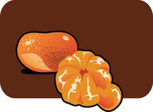 Tangerine. Color illustration of a tangerine. Part of my vector fruit Collection. The vector file is in AI-EPS8 format Royalty Free Stock Images