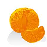 Tangerine. On a white background, separately Stock Image