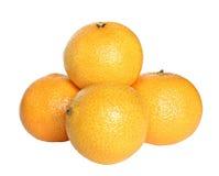 tangerine Стоковое Изображение