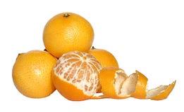 tangerine Royaltyfria Bilder
