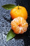 Tangerine. Isolated on dark background Stock Photography