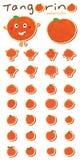 Tangerine akwareli ustalony majcher Zdjęcie Royalty Free