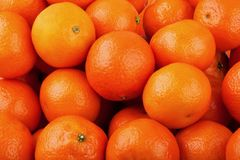 Tangerine background Royalty Free Stock Images
