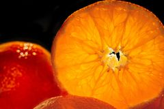 Tangerine background. Tangerines close-up Stock Image