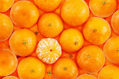 Tangerine background. A group of tangerines with one peeled Stock Photos