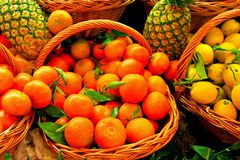 Tangerine basket Stock Photo
