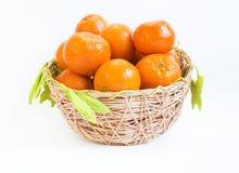 Tangerine basket mandarin Royalty Free Stock Image