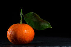 Tangerine. With black background and brightness Stock Images