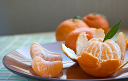 Tangerine on brown plate with peel and segments Stock Images