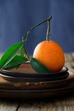 Tangerine on brown plates Stock Image