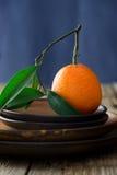 Tangerine on brown plates Stock Image