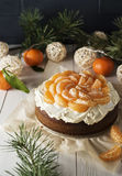 Tangerine Cake Stock Photography