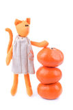 Tangerine cat Royalty Free Stock Photo
