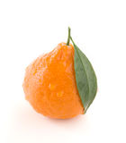 Tangerine citrus Stock Photos