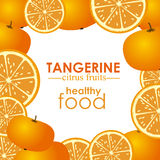 Tangerine citrus fruit Royalty Free Stock Images