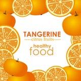 Tangerine citrus fruit Royalty Free Stock Images