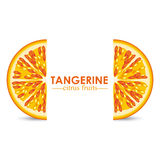 Tangerine citrus fruit Stock Photography