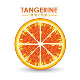 Tangerine citrus fruit Stock Photos