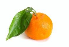 Tangerine Citrus fruits on white background Stock Photo