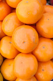 Tangerine. Citrus tangerina or tangerine, the sour and sweet fruit Stock Photo