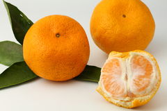 Tangerine close up. A few tangerines  on white background Stock Image