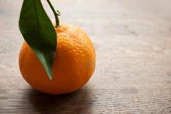 Tangerine Royalty Free Stock Photography