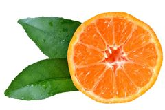 Tangerine cut with leaf isolated. On white background royalty free stock image