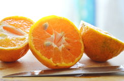 Tangerine cut for squeeze on wooden chop block. Tangerine cut for squeeze and knife on wooden chop block stock photo