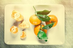 Tangerine delight. Ripe juicy mandarines in vintage style - retro still life and healthy nutrition concept. Tangerine delight stock photography