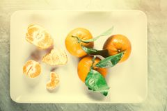Tangerine delight. Ripe juicy mandarines in vintage style - retro still life and healthy nutrition concept. Tangerine delight royalty free stock image