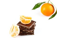 Tangerine dream royalty free stock photo