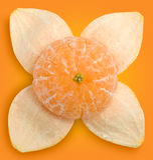 Tangerine e casca #1 | Trajetos de grampeamento Foto de Stock Royalty Free