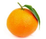 Tangerine. Fresh Ripe Tangerine with Leaf isolated on White Plank background royalty free stock image