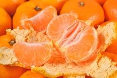 Tangerine fruit close up Stock Photos