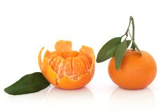 Tangerine Fruit with Leaf Sprig Stock Photo