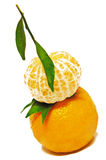 Tangerine Fruits. Isolated on White Royalty Free Stock Photo