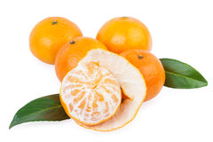 Tangerine fruits Stock Photos