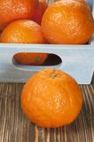 Tangerine fruits Royalty Free Stock Photography