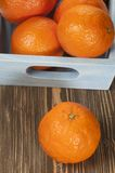 Tangerine fruits Royalty Free Stock Photos
