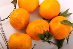 Fresh some tangerine on dish. Tangerine fruits on white background Stock Image
