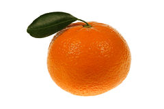 Tangerine with a green leaf Stock Photography