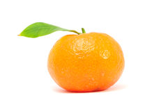 Tangerine with Green Leaf Royalty Free Stock Image