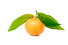 Tangerine with green leaves Royalty Free Stock Photo