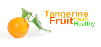 Tangerine with green leaves Stock Images