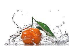 Tangerine with green leaves and water splash Stock Photography
