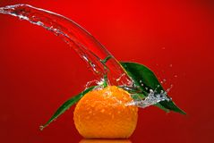 Tangerine with green leaves and water splash Stock Photos