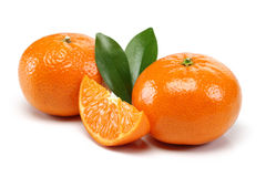 Tangerine Group royalty free stock image