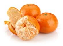 Tangerine grupa fotografia stock