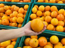 Tangerine in hand. With tangerines in basket background Royalty Free Stock Photo