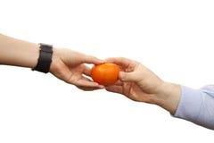Tangerine in hands Stock Photos